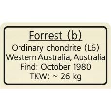 Forrest (b) / Forrest 002