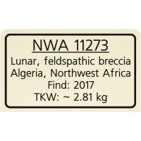 NWA 11273