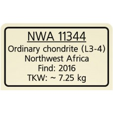 NWA 11344