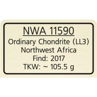 NWA 11590