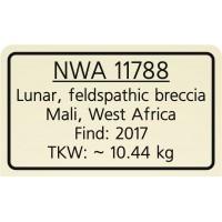 NWA 11788