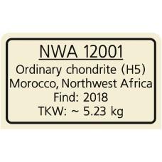 NWA 12001