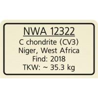 NWA 12322