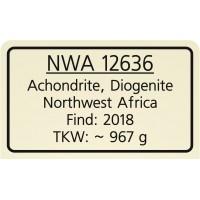 NWA 12636