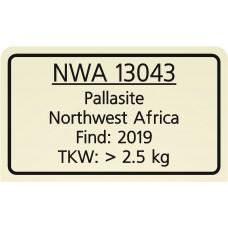 NWA 13043