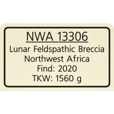 NWA 13306
