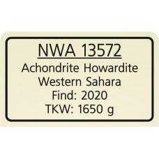 NWA 13572