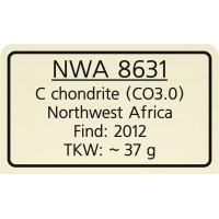 NWA 8631